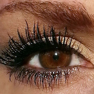 Brown_eye_with_lashes